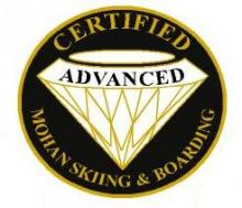 Certified Advanced Personal Achievement Award Pin.