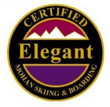 Certified Elegant Personal Achievement Award Pin.